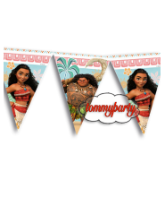 Oceania festone bandierine