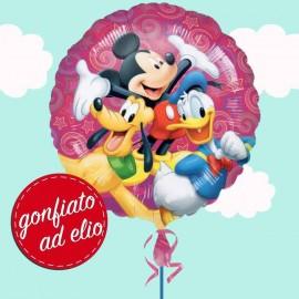 Mickey Disney Celebration...