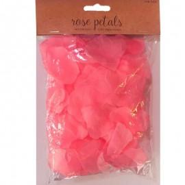 petali di rosa colore rosa hot