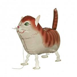 palloncino pet walker gatto